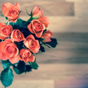 Les plus belles fleurs d'été